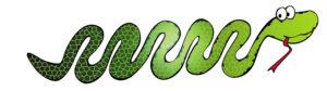Visuel de Emile, le serpent mobile